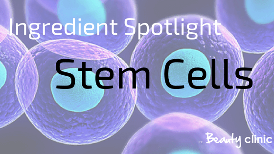 ingredient spotlight Stem Cells in skincare